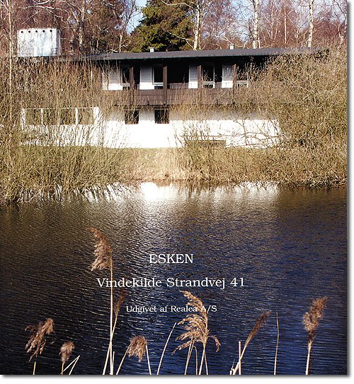 Billede af Esken - Hanne Eske Dyva - Bog