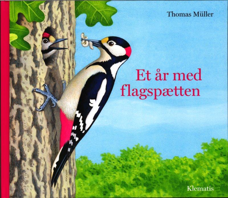 Image of   Et år Med Flagspætten - Thomas Müller - Bog