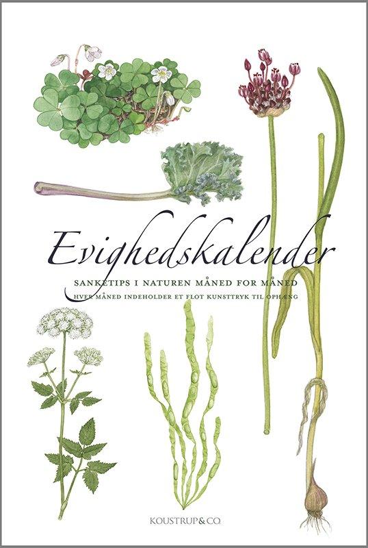 Image of   Evighedskalender - Sanketips I Naturen Måned For Måned