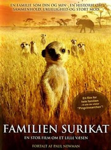 Image of   Familien Surikat / The Meerkats - DVD - Film