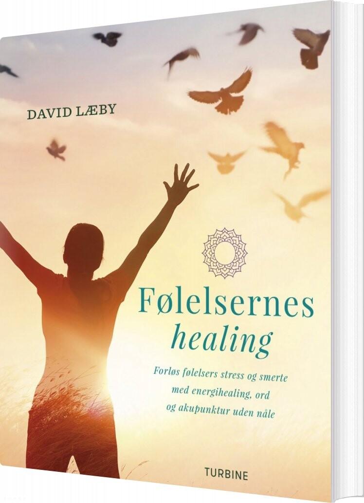 Følelsernes Healing - David Læby - Bog