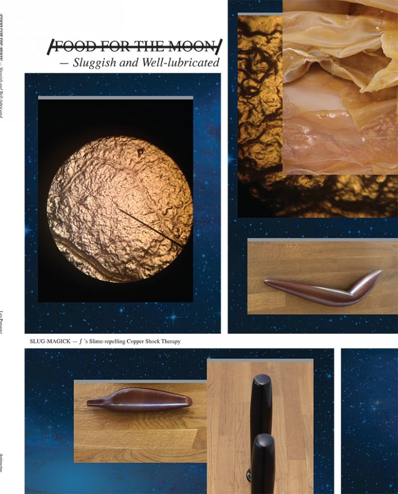 Image of   /food For The Moon/ - Lea Porsager - Bog