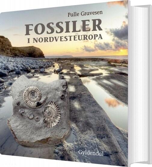 Image of   Fossiler I Nordvesteuropa - Palle Gravesen - Bog