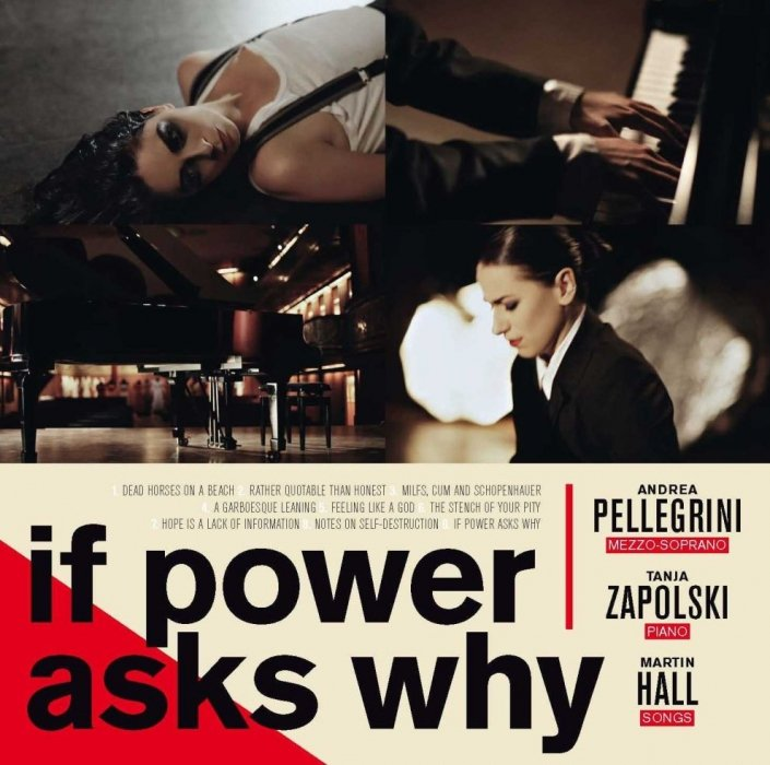 Image of   Martin Hall - If Power Asks Why - CD