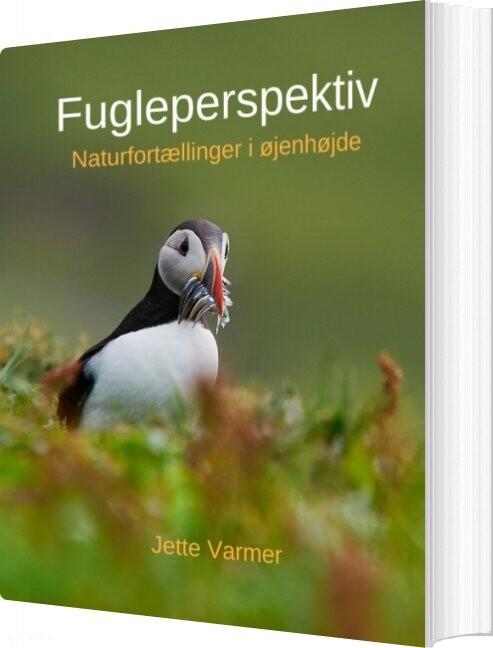 Billede af Fugleperspektiv - Jette Varmer - Bog