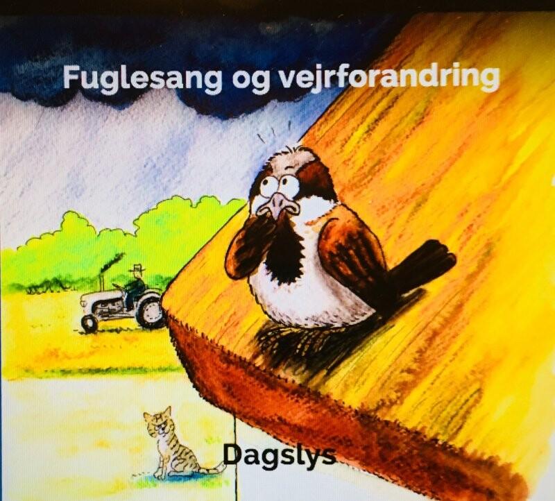 Image of   Dagslys - Fuglesang Og Vejrforandring - CD