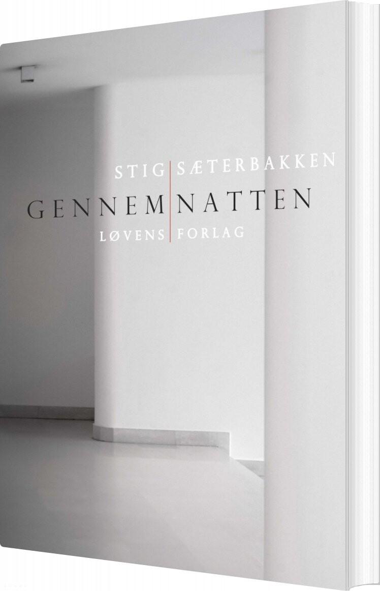 Image of   Gennem Natten - Stig Sæterbakken - Bog