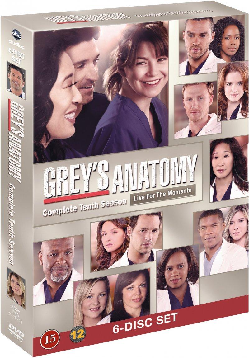 Greys Hvide Verden - Sæson 10 / Greys Anatomy - Season 10 - DVD - Tv-serie