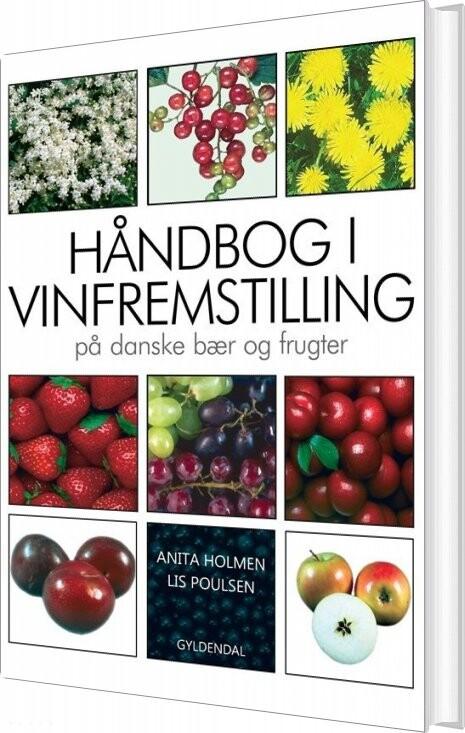 Håndbog I Vinfremstilling På Danske Bær Og Frugter - Anita Holmen - Bog