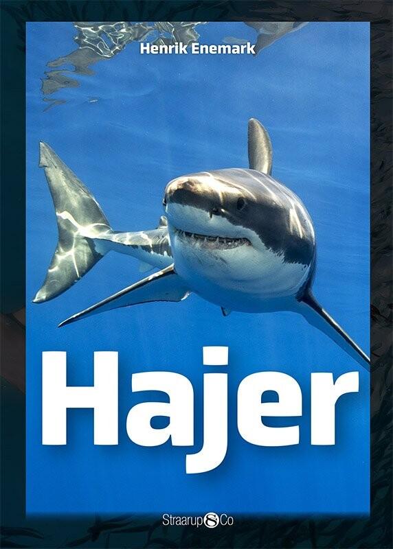 Billede af Hajer - Henrik Enemark - Bog