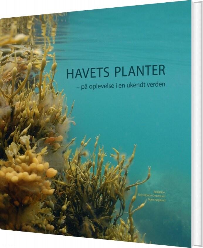 Billede af Havets Planter - Bog