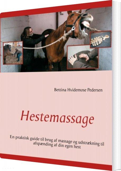 Hestemassage - Bettina Hvidemose Pedersen - Bog