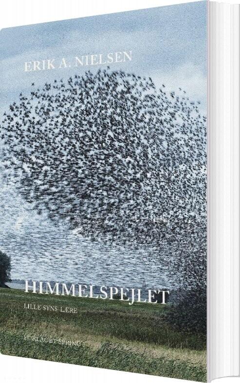 Image of   Himmelspejlet - Erik A. Nielsen - Bog