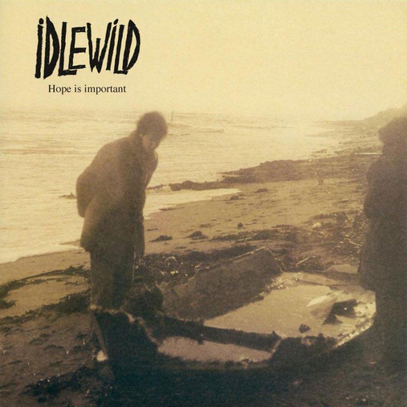 Idlewild - Hope Is Important - Vinyl / LP