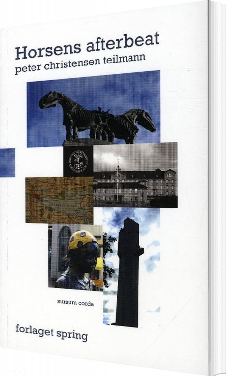 Horsens Afterbeat - Peter Christensen Teilmann - Bog