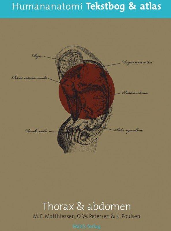 Image of   Human Anatomi Thorax & Abdomen - Ole W. Petersen - Bog