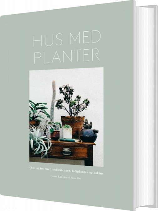 Image of   Hus Med Planter - Rose Ray - Bog