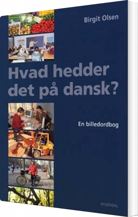 Image of   Hvad Hedder Det På Dansk? - Birgit Olsen - Bog