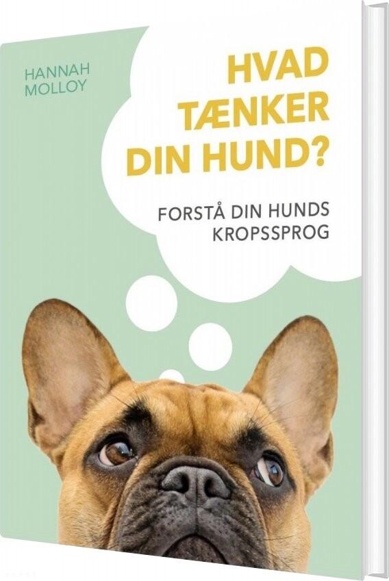 Hvad Tænker Din Hund? - Hannah Molloy - Bog