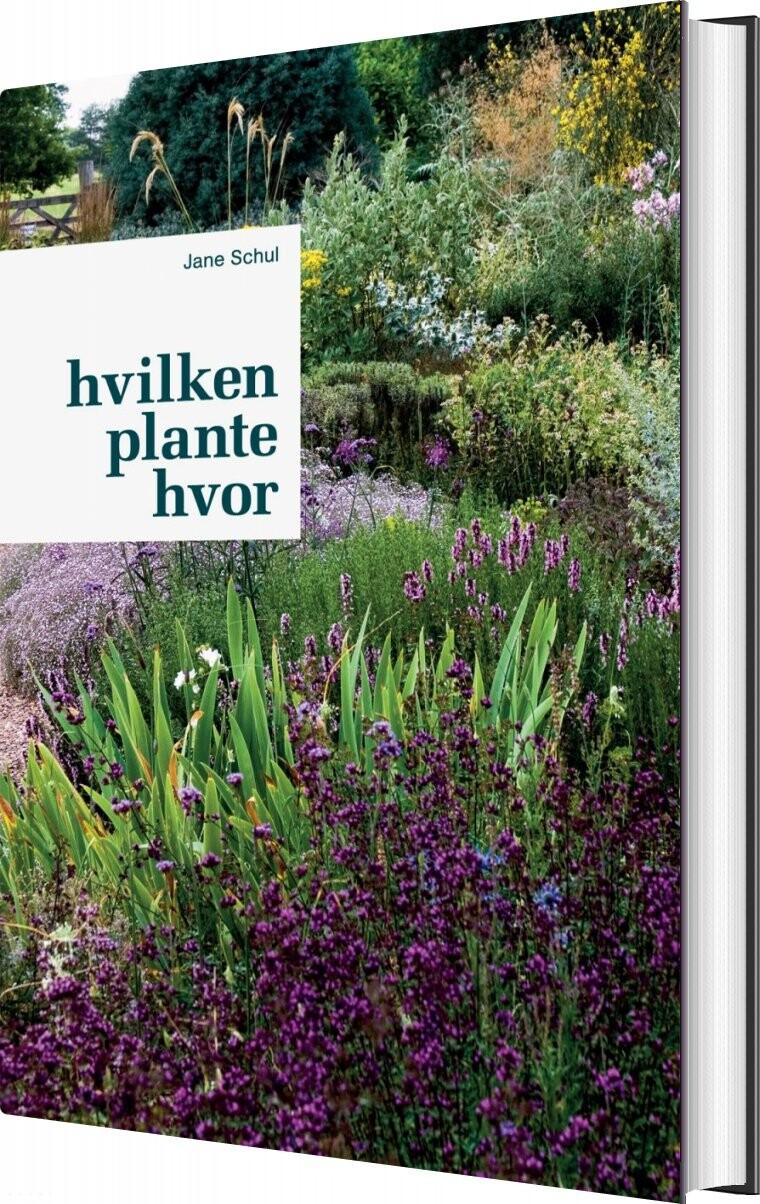 Image of   Hvilken Plante Hvor - Jane Schul - Bog