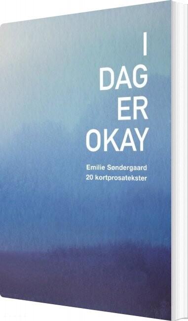 I Dag Er Okay - Emilie Søndergaard - Bog
