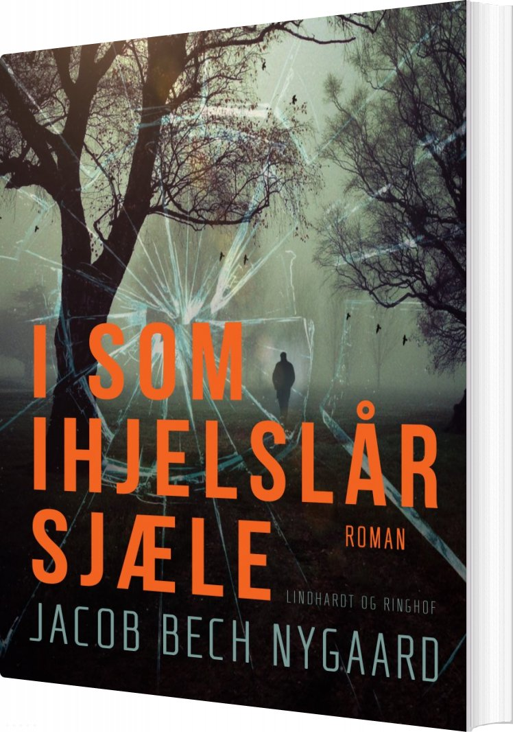 Image of   I Som Ihjelslår Sjæle - Jacob Bech Nygaard - Bog