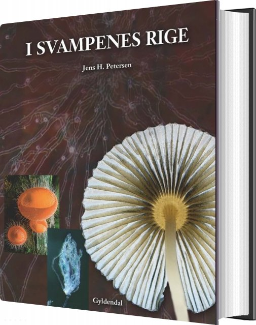 Image of   I Svampenes Rige - Jens H. Petersen - Bog