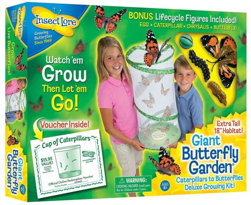 Image of   Insect Lore - Giant Butterfly Garden