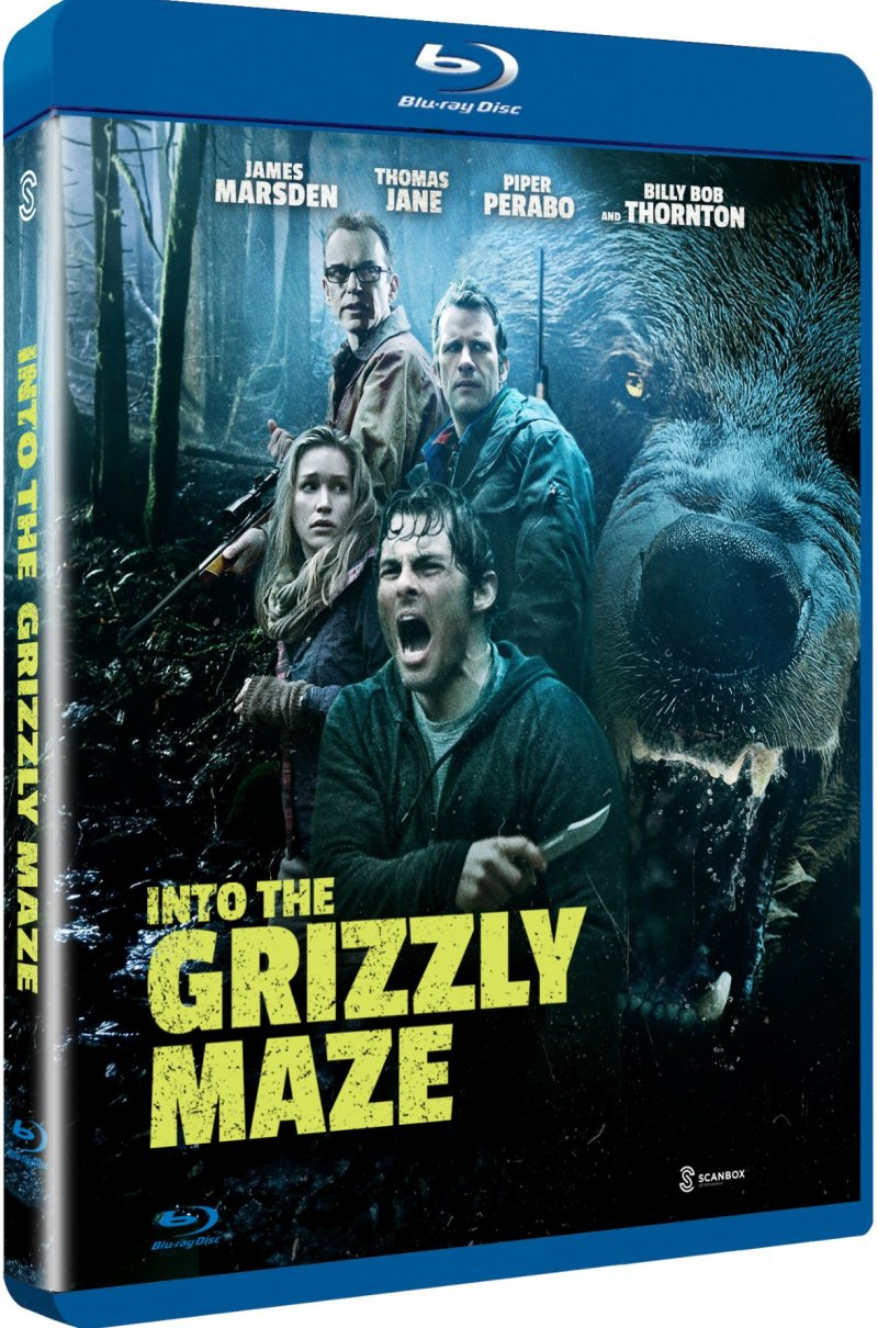 Image of   Into The Grizzly Maze - Blu-Ray