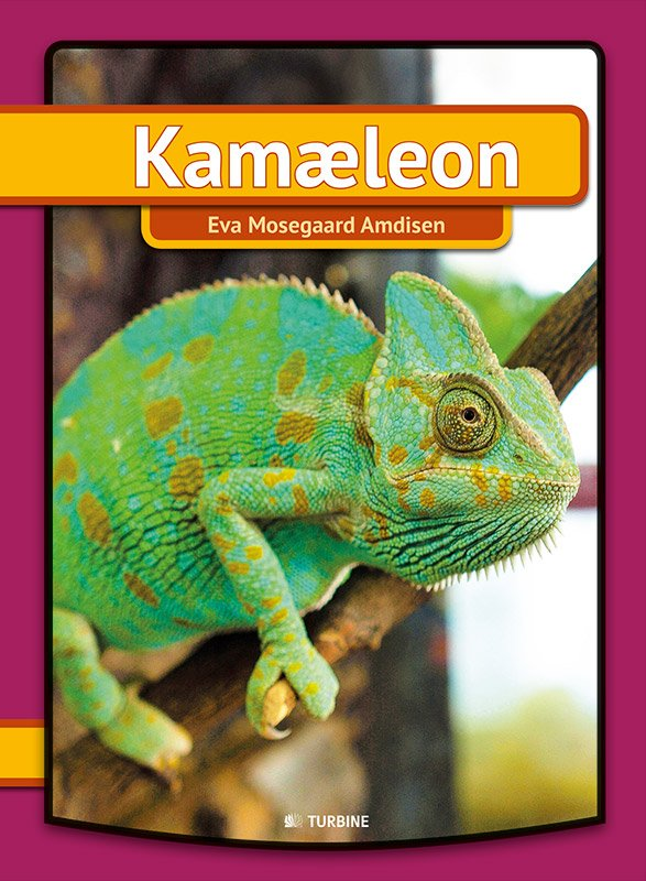 Kamæleon - Eva Mosegaard Amdisen - Bog