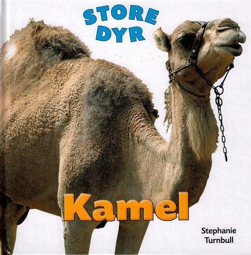 Image of   Store Dyr - Kamel - Stephanie Turnbull - Bog