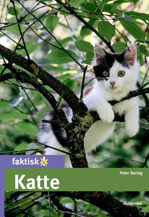 Image of   Katte - Peter Bering - Bog