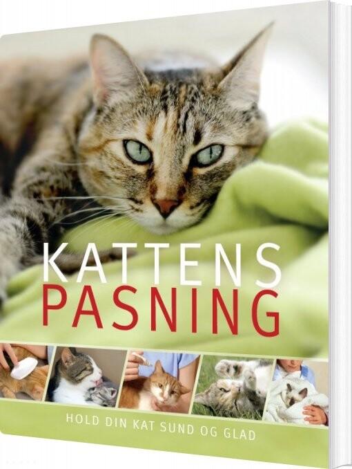 Billede af Kattens Pasning - Ann Baggaley - Bog