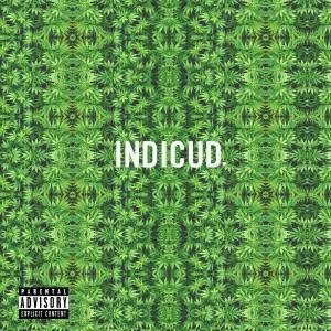 Image of   Kid Cudi - Indicudi - CD