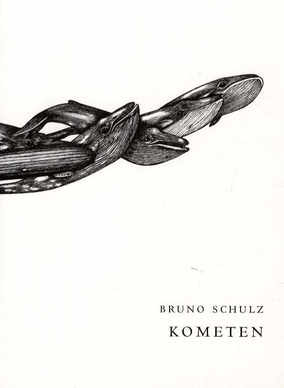 Kometen - Bruno Schulz - Bog