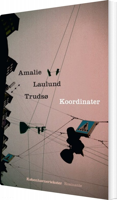 Image of   Koordinater - Amalie Laulund Trudsø - Bog