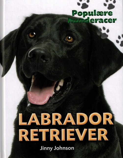 Populære Hunderacer - Labrador Retriever - Jinny Johnson - Bog