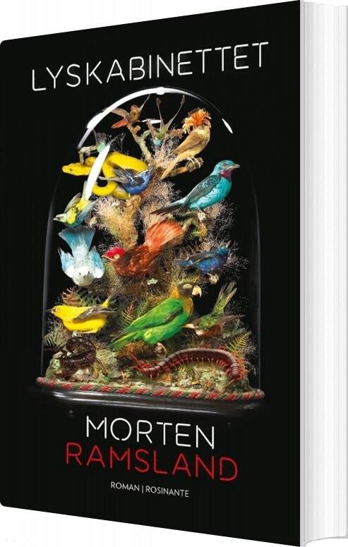Lyskabinettet - Morten Ramsland - Bog