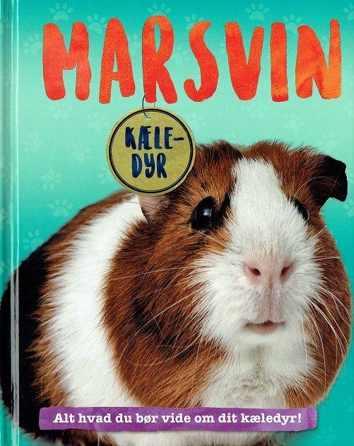 Image of   Marsvin - Alt Hvad Du Bør Vide Om Dit Kæledyr - Pat Jacobs - Bog