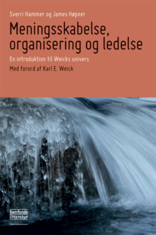 Meningsskabelse, Organisering Og Ledelse - James Høpner - Bog