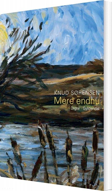 Mere Endnu - Knud Sørensen - Bog