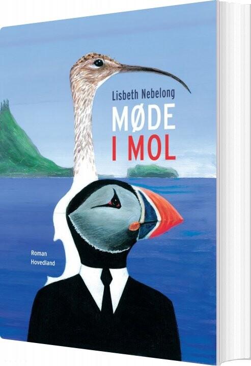 Image of   Møde I Mol - Lisbeth Nebelong - Bog