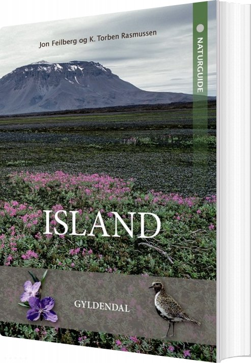 Naturguide Island - Jon Feilberg - Bog