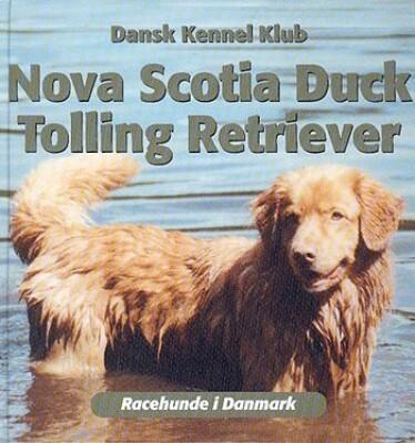Image of   Nova Scotia Duck Tolling Retriever - Anne Marie Henriksen - Bog