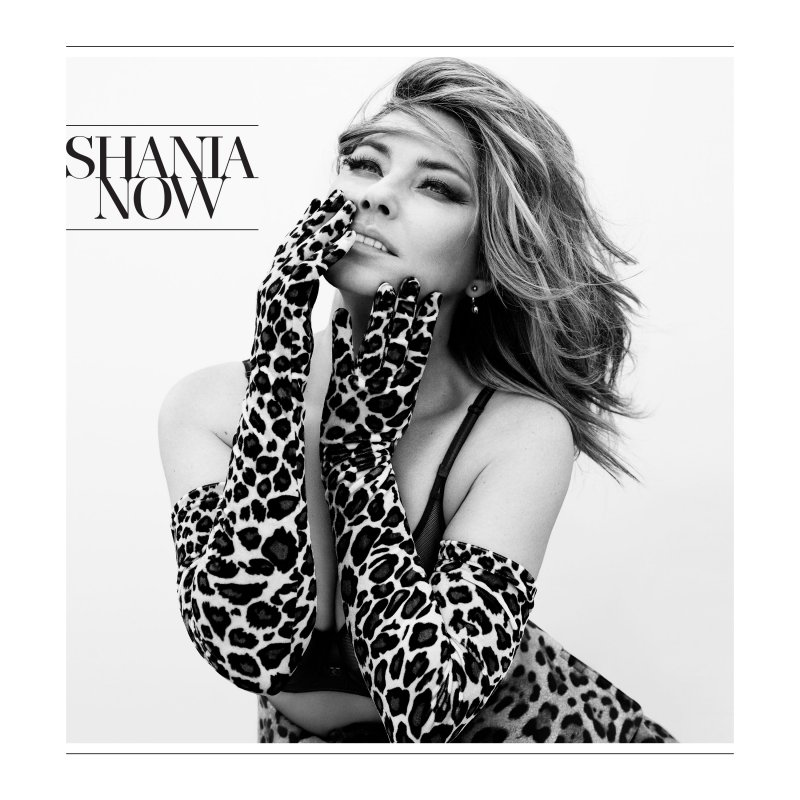 Image of   Shania Twain - Now - CD