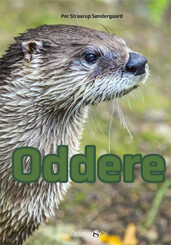 Oddere - Per Straarup Søndergaard - Bog