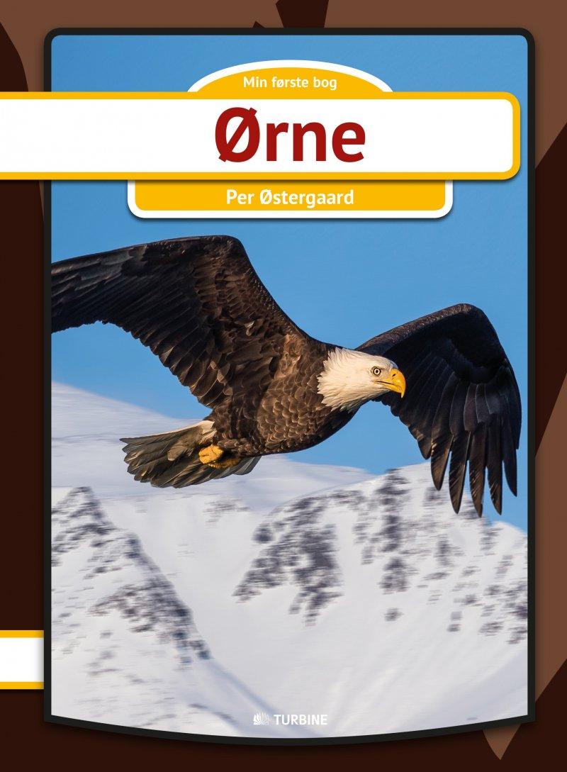 Image of   ørne - Per østergaard - Bog