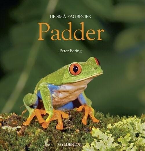 Image of   Padder - Peter Bering - Bog