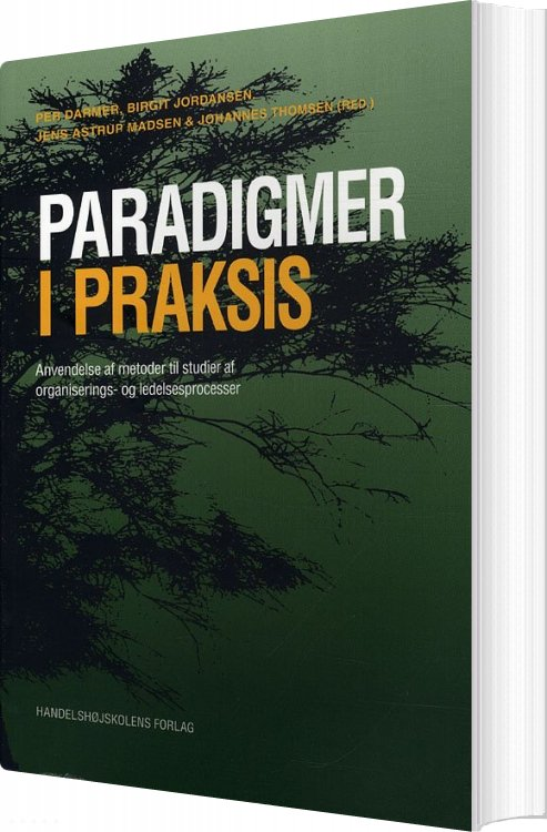 Image of   Paradigmer I Praksis - Per Darmer - Bog