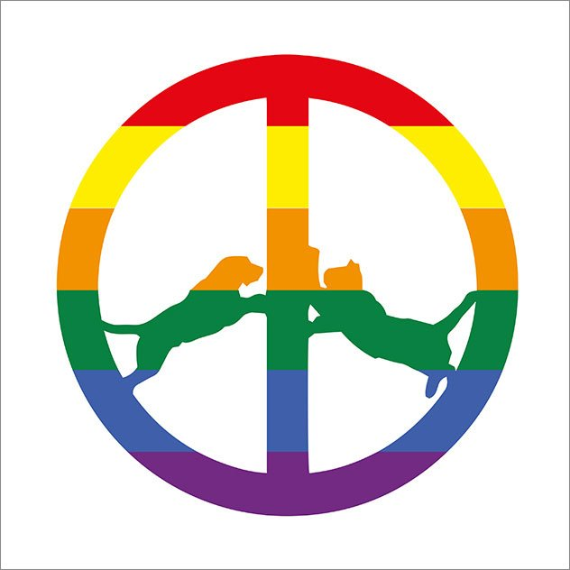 Image of   Hype Williams - Rainbow Edition - CD
